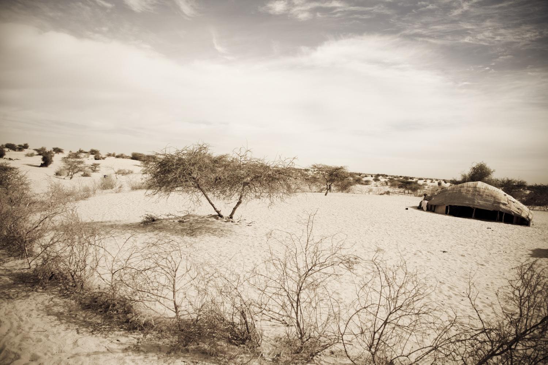 Photographer Johanna Henriksson, Fotograf Johanna Henriksson, foto, changing desert Lost Land, climate change, desert, etnographical museeum, Henriksson, Johanna Henriksson, kameler, klimat, klimatförändring, klimatförändringar, Mali, nomad, nomader, nomads, Northern Mali, regn, Sahara, Sahel, Timbuktu, tuareg, tuareger, tuaregs, Westafrica, Västafrika, öken